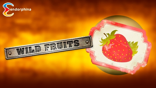 Play online Casino Wild Fruits